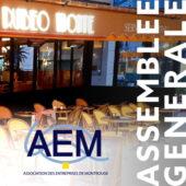Assemblée générale AEM 2020