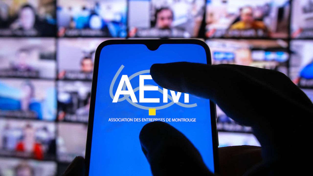 Réunion AEM en visio conférence